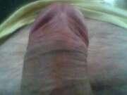 Photos de la bite de Jolyjumper01, mon sexe