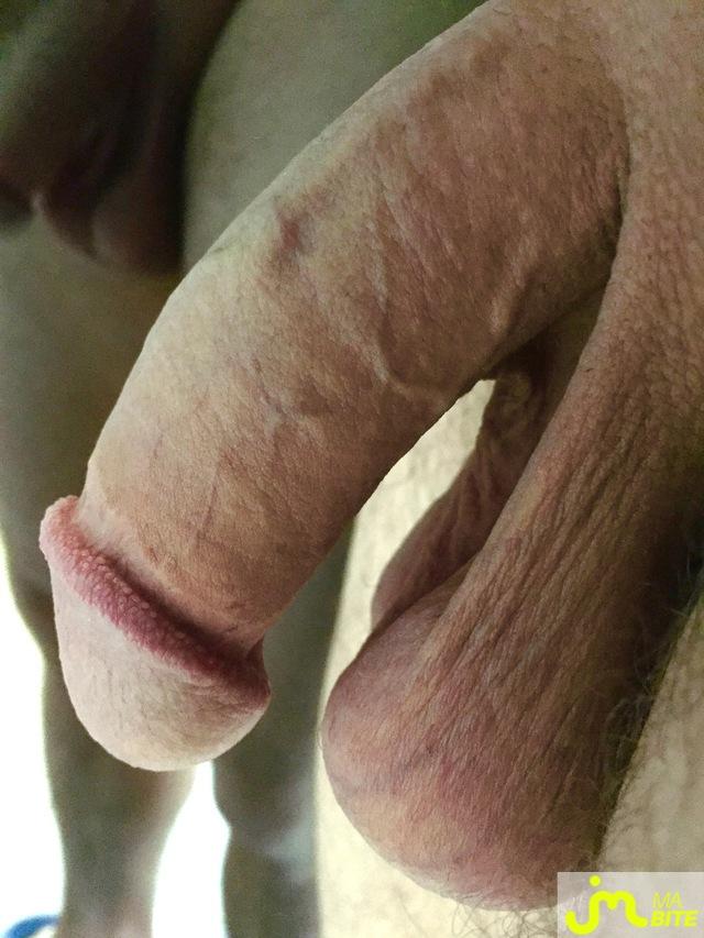 webcam bite gay franche comte
