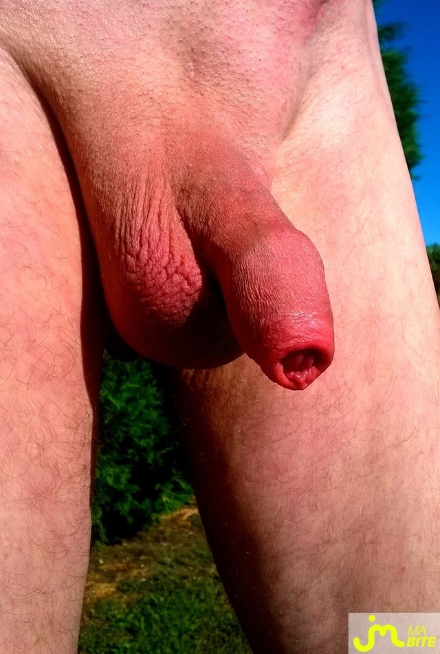 Photo de la bite de Vxmâlebi46