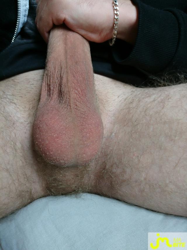Photo de la bite de Cm19,5