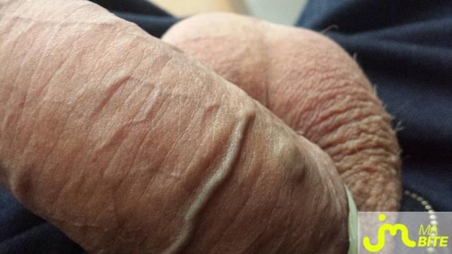 Photo de la bite de Karl-16