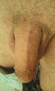 Photos de la bite de Orphelines, Bite rasée ou pas mesdames????