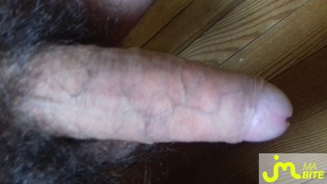 Photo de la bite de Stef43